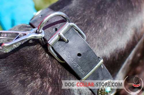 Reliable Nickel Plated Hardware on Decorated Leather Dog Collar