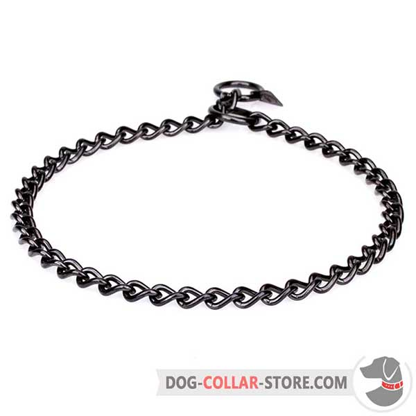 Dog Stainless Steel Choke Collar in stylish black