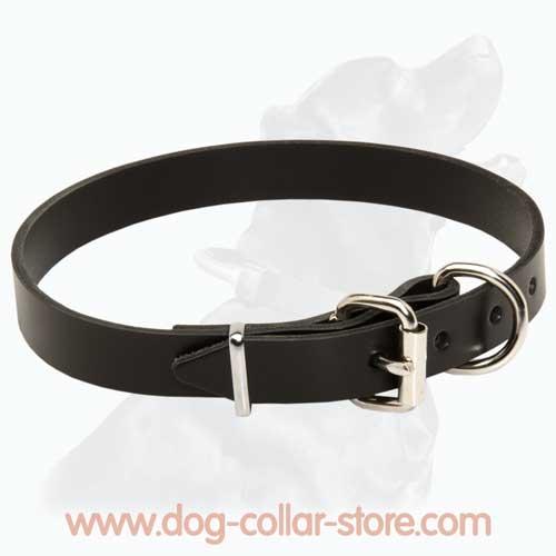 slim leather collar