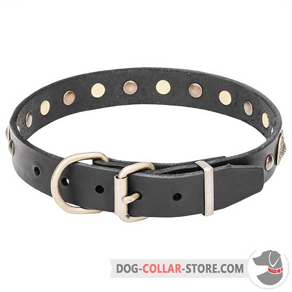 Dog Collar of strong leather with brass hardware