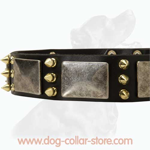 Unique Design Leather Dog Collar With Nickel Plates And Spikes
