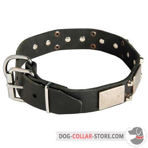 Decorated Leather Dog Collar with Reliable Nickel Plated Buckle