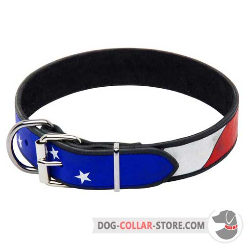Hand Painted Decorative Leather Dog Collar With Nickel Plated Buckle