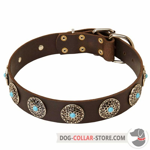 Wide Leather Dog Collar Adorned with Blue Stoned Circles
