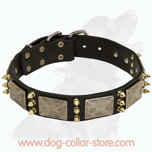 Handcrafted Leather Dog Collar with Nickel Buckle