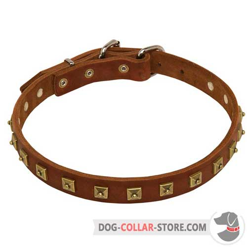 Everyday Leather Dog Collar with Original Brass-Plated Decoration
