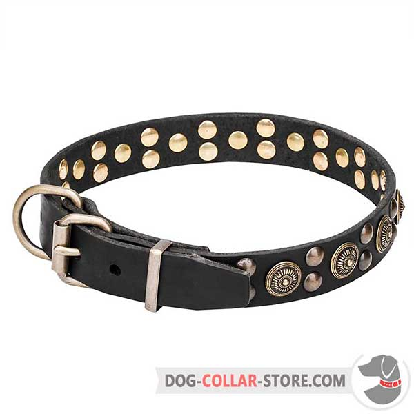 Dog Collar with strong hardware