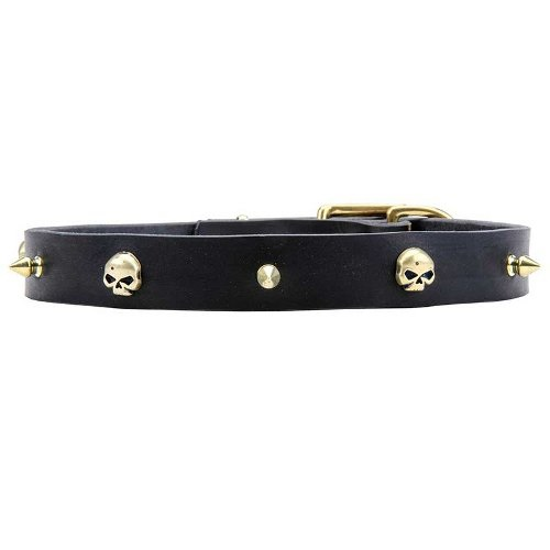 Dog Collar with durable brass hardware