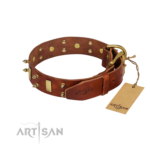 Full grain genuine leather dog collar with polished leather surface