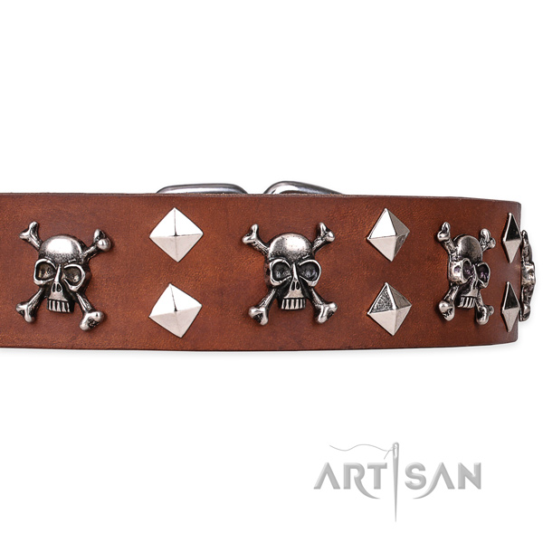 Hardwearing leather dog collar with rust-resistant elements