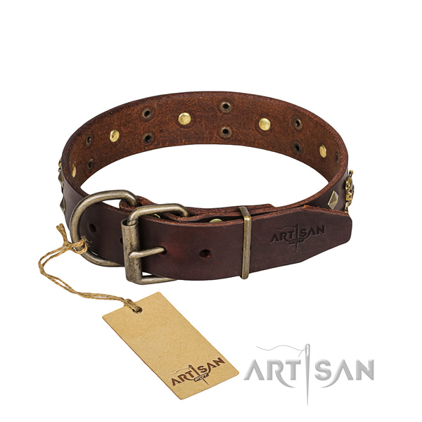 Long-lasting leather dog collar with rust-proof fittings
