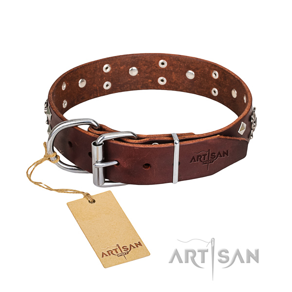 Day-to-day leather dog collar with incredible decorations