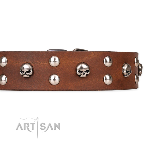 Full grain natural leather dog collar with worked out leather strap
