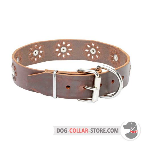 Leather Dog Collar designed for walking in style