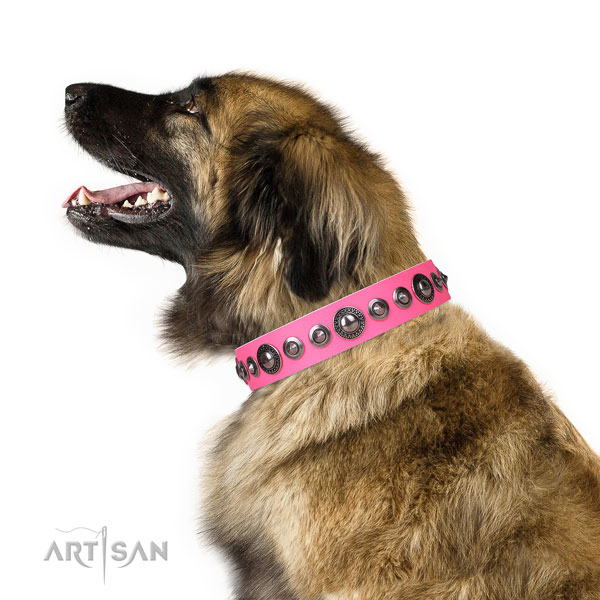 Stunning embellished natural leather dog collar for stylish walking