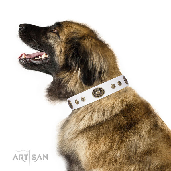 Unusual adorned natural leather dog collar for comfortable wearing