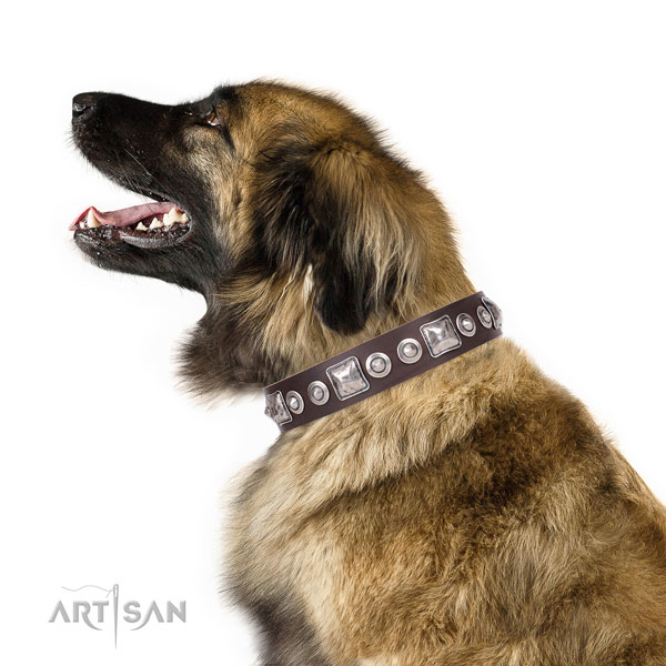 Inimitable embellished leather dog collar for comfortable wearing