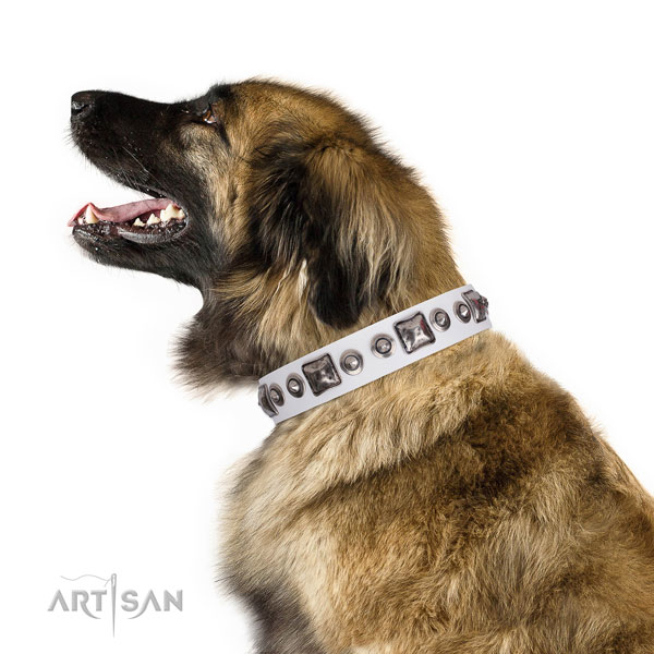 Top notch decorated genuine leather dog collar for stylish walking
