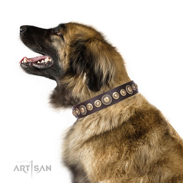 Stylish embellished natural leather dog collar