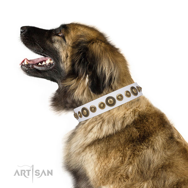 Corrosion resistant buckle and D-ring on leather dog collar for walking