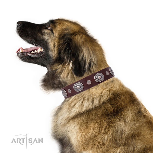 Durable buckle and D-ring on natural leather dog collar for daily walking