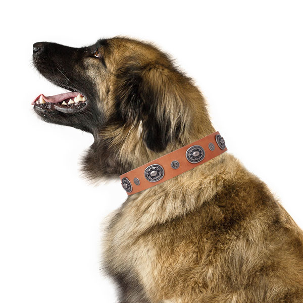 Natural leather dog collar with corrosion proof buckle and D-ring for walking