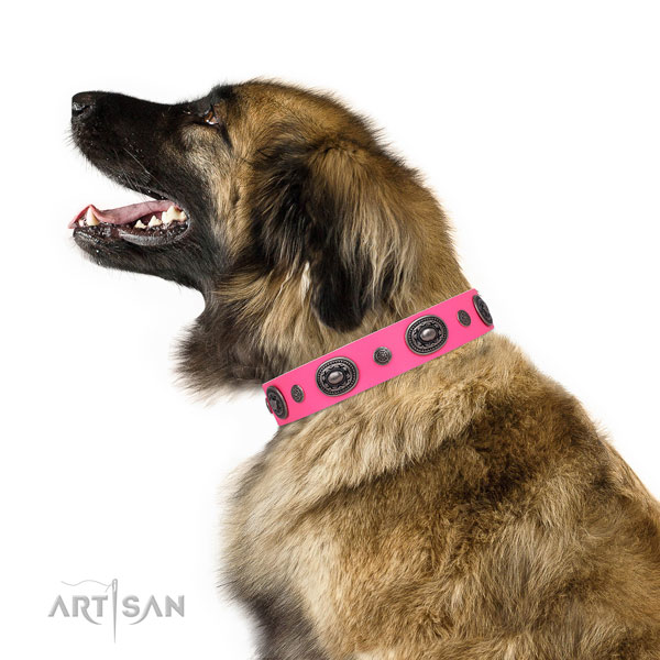 Natural leather dog collar with rust resistant buckle and D-ring for handy use