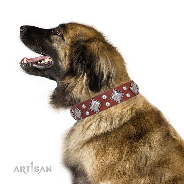 Handy use decorated dog collar made of strong natural leather