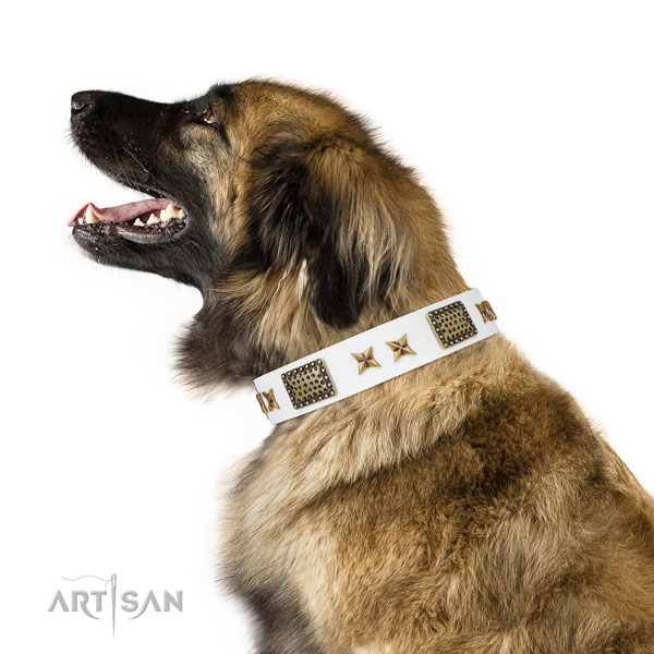 Trendy decorations on comfy wearing full grain leather dog collar