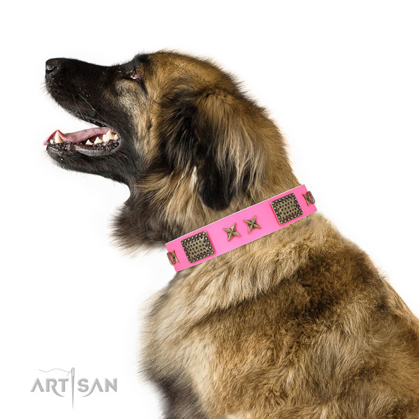 Unusual adornments on easy wearing genuine leather dog collar