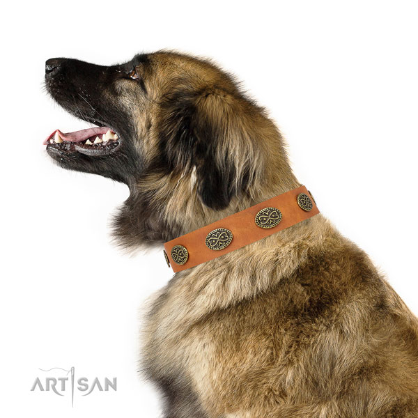 Top notch embellishments on comfortable wearing genuine leather dog collar
