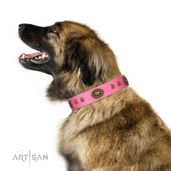 Unique studs on handy use dog collar