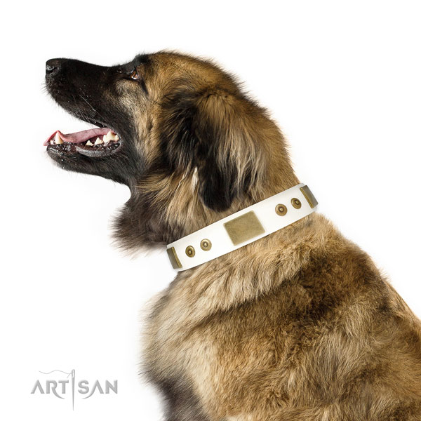 Reliable everyday use dog collar of genuine leather