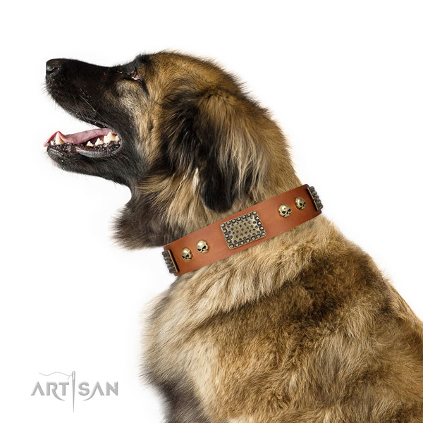 Rust-proof D-ring on natural leather dog collar for daily use