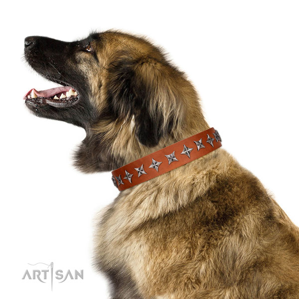Strong full grain natural leather dog collar with inimitable decorations