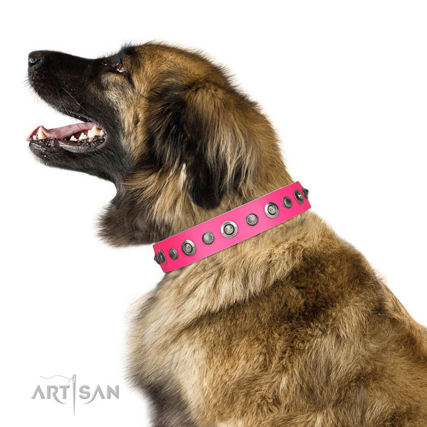 Genuine leather collar with reliable D-ring for your beautiful doggie