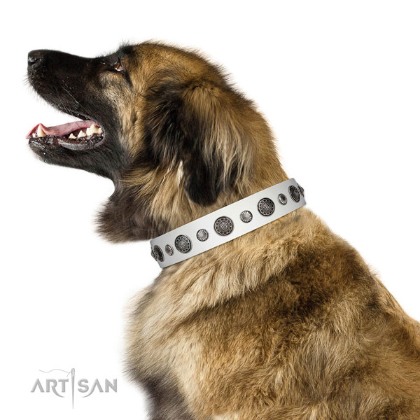 Fine quality natural leather dog collar with rust-proof fittings