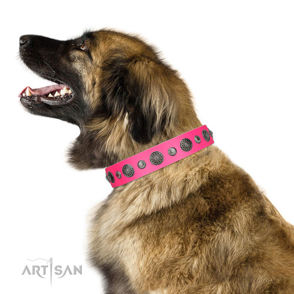 Fashionable Full grain natural leather dog collar with rust-proof buckle