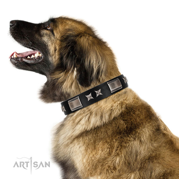 Comfortable wearing soft to touch natural leather dog collar with studs