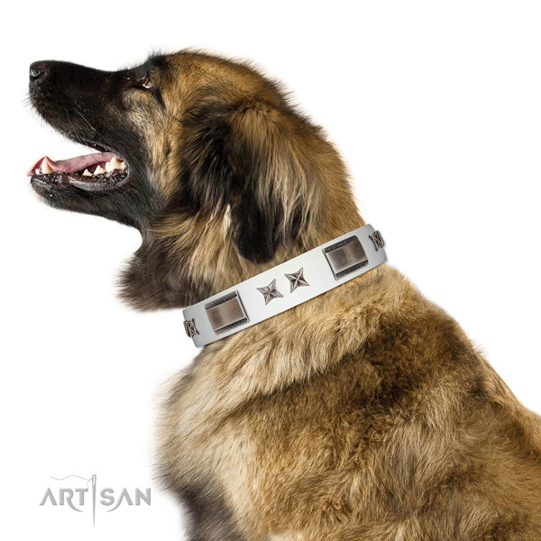 Inimitable collar of full grain natural leather for your attractive canine