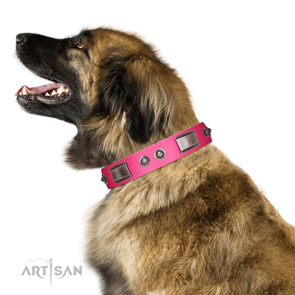 Designer leather dog collar with studs