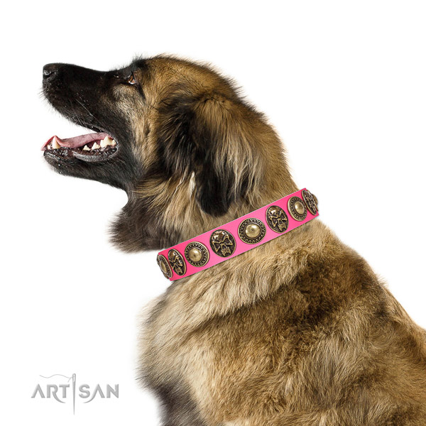 Top quality genuine leather collar for your attractive pet