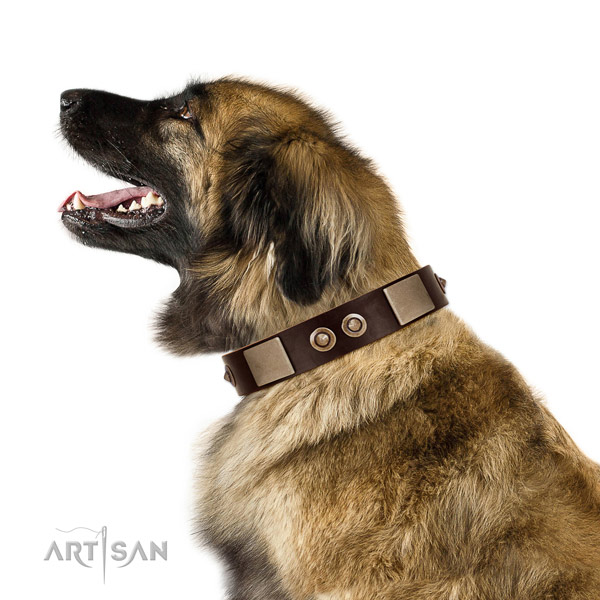 Corrosion resistant D-ring on leather dog collar for stylish walking