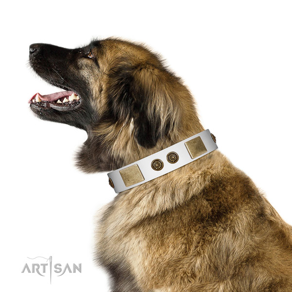 Incredible dog collar handmade for your impressive four-legged friend
