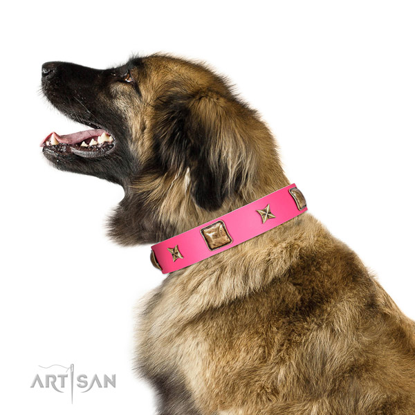 Full grain genuine leather dog collar of top rate material with unique studs