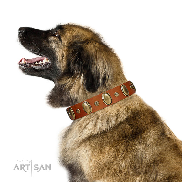 Unusual full grain genuine leather dog collar with reliable D-ring