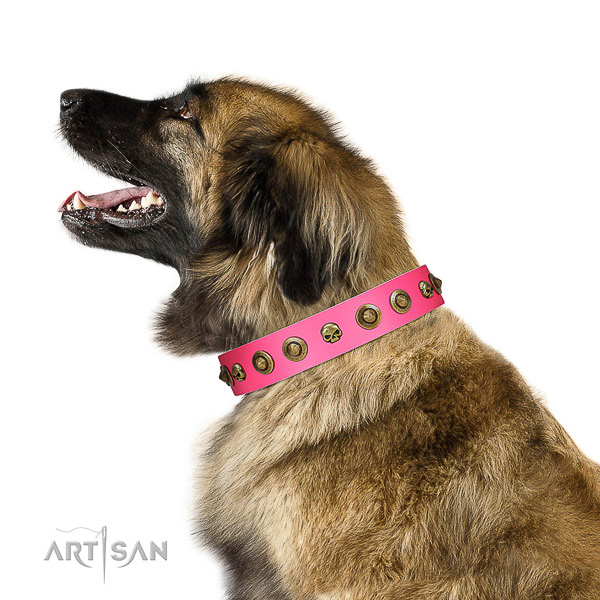 Stunning full grain leather dog collar with decorations