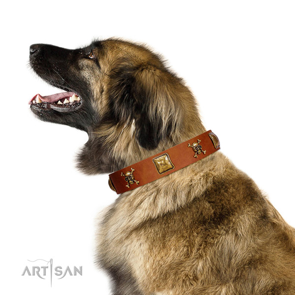 Stylish design genuine leather dog collar with reliable embellishments