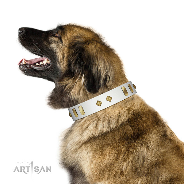Everyday walking best quality genuine leather dog collar with decorations