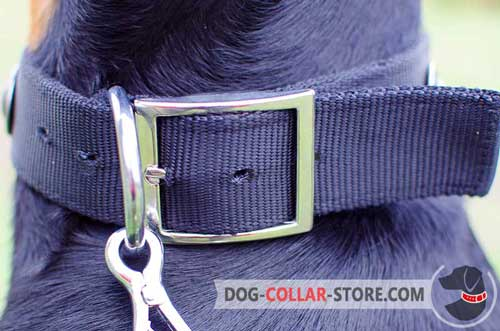 Practical Reliable Nickel Plated Hardware on Decorated Nylon Dog Collar